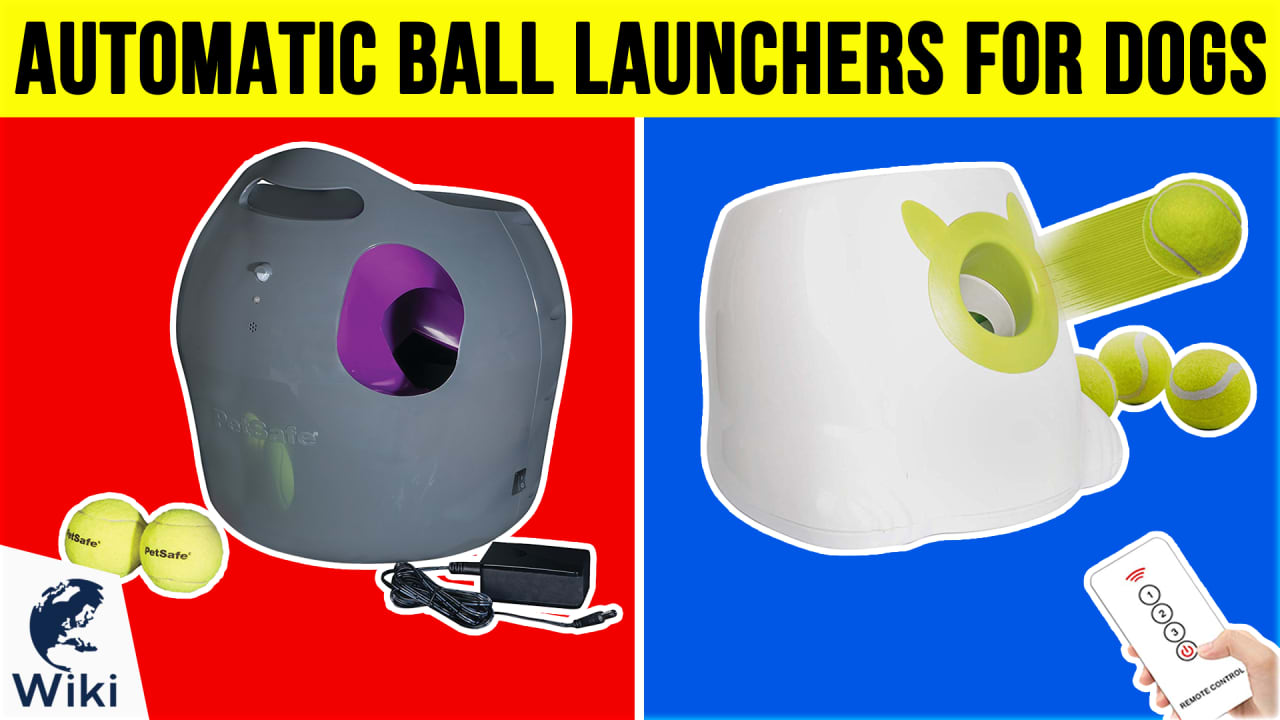 7 Best Automatic Ball Launchers For Dogs