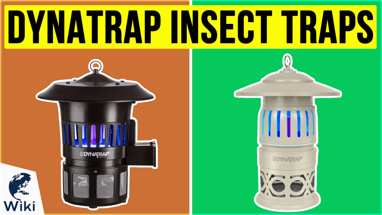 9 Best Dynatrap Insect Traps
