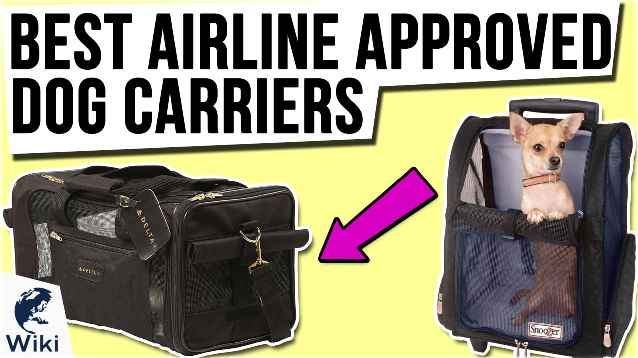 10 Best Airline Approved Dog Carriers