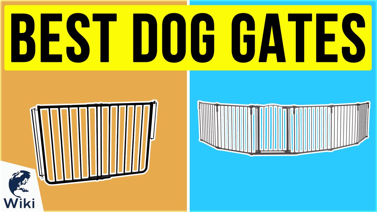 10 Best Dog Gates