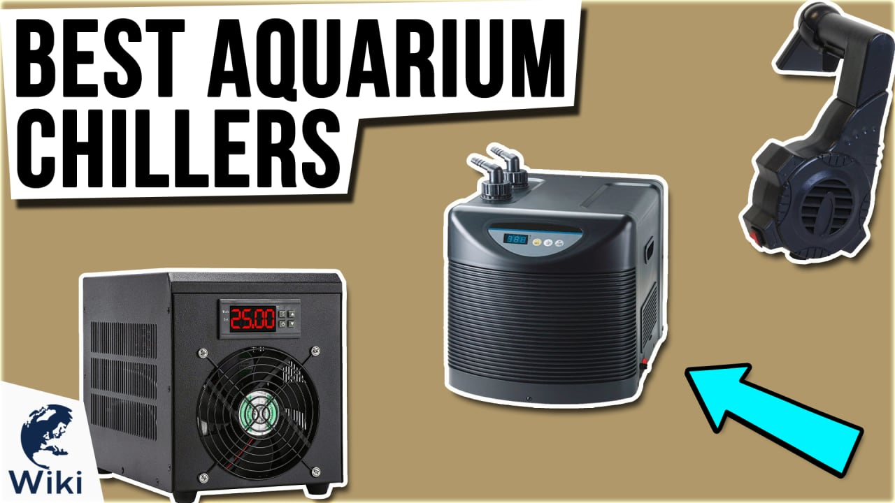 7 Best Aquarium Chillers
