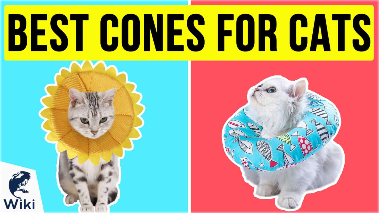 10 Best Cones For Cats