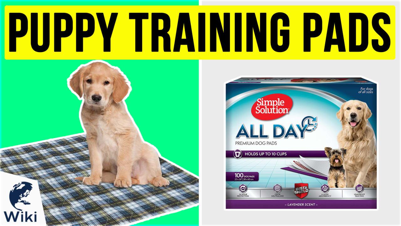 10 Best Puppy Training Pads