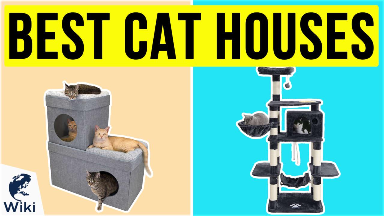 10 Best Cat Houses