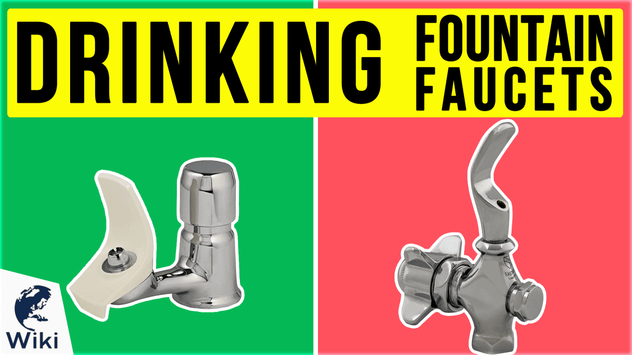 9 Best Drinking Fountain Faucets