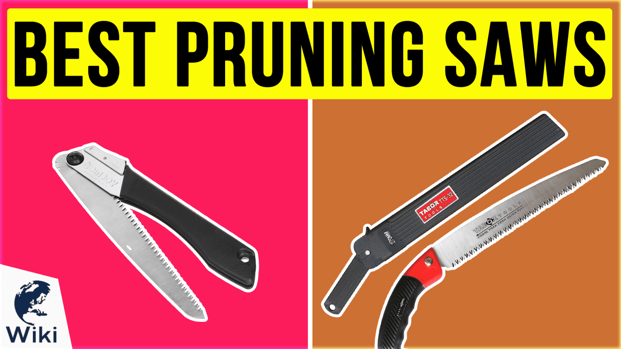 10 Best Pruning Saws