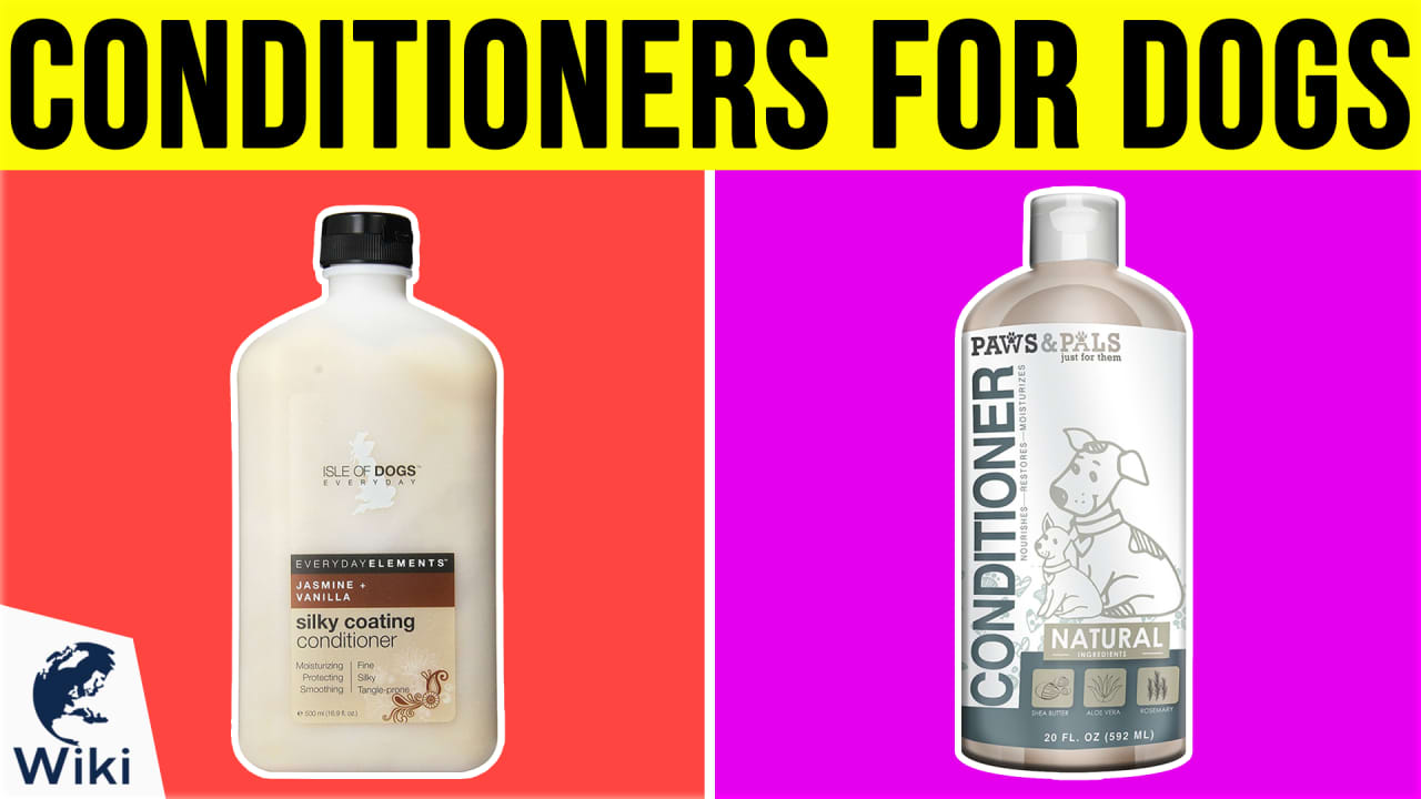 10 Best Conditioners for Dogs