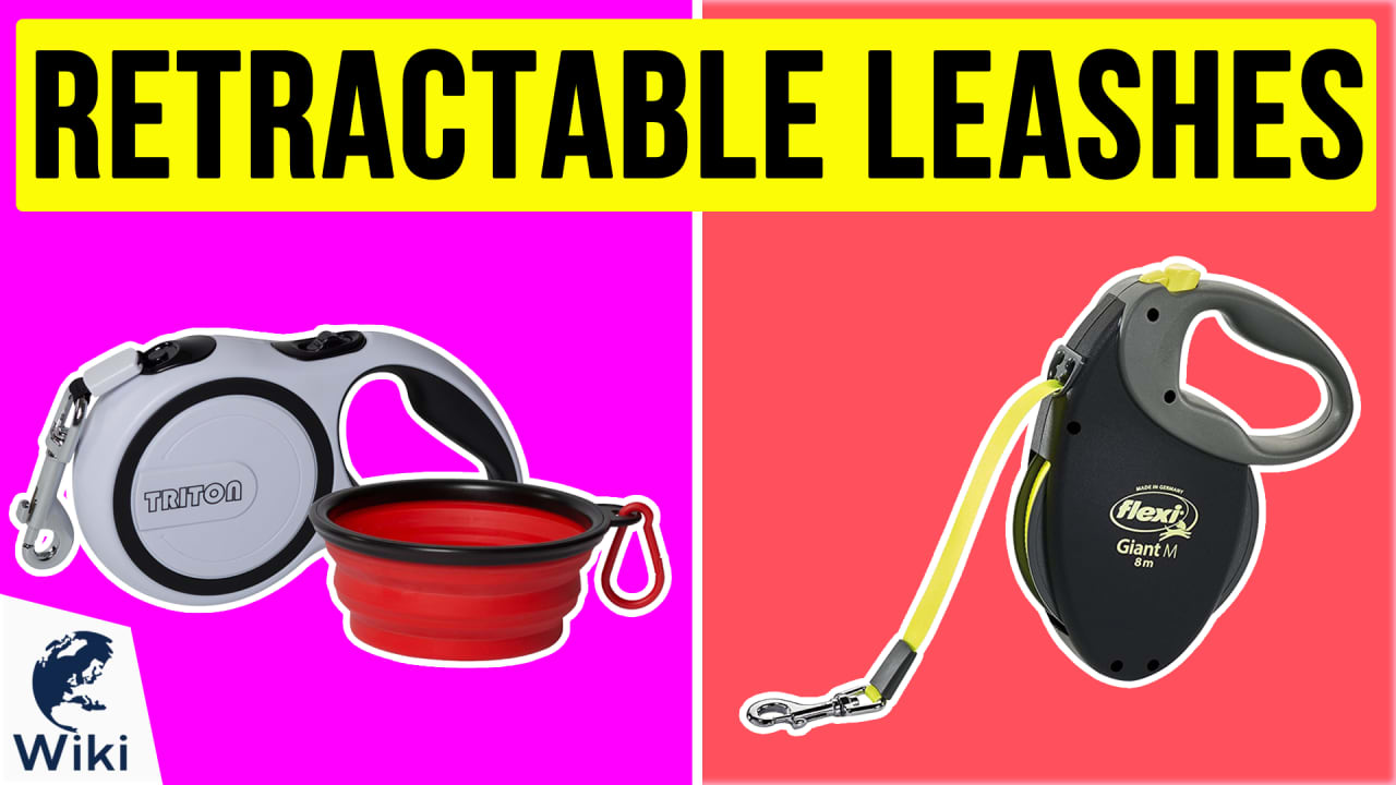 10 Best Retractable Leashes