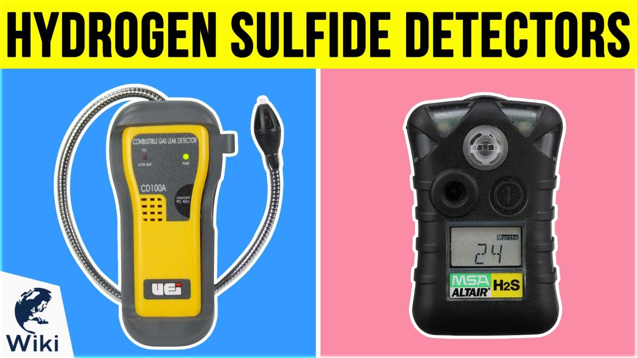 6 Best Hydrogen Sulfide Detectors