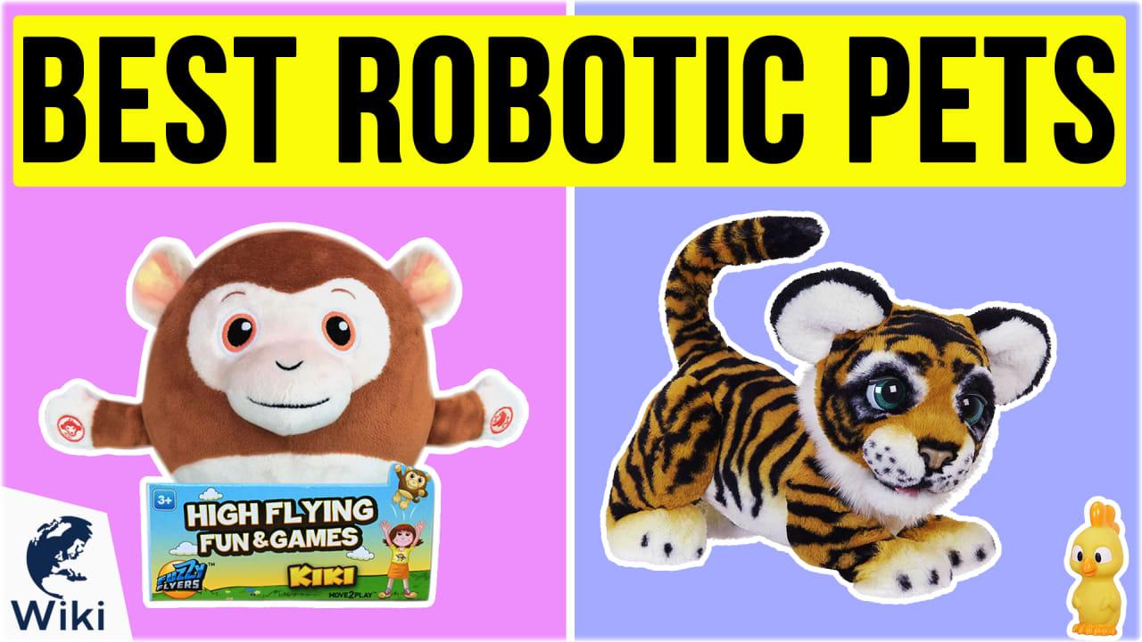 10 Best Robotic Pets