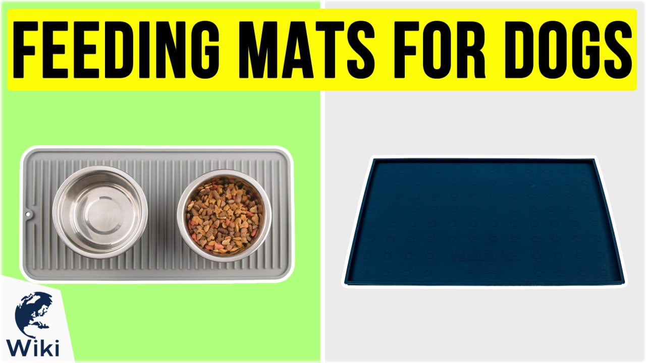 10 Best Feeding Mats For Dogs