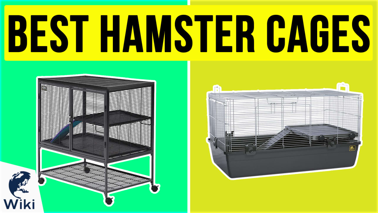 6 Best Hamster Cages