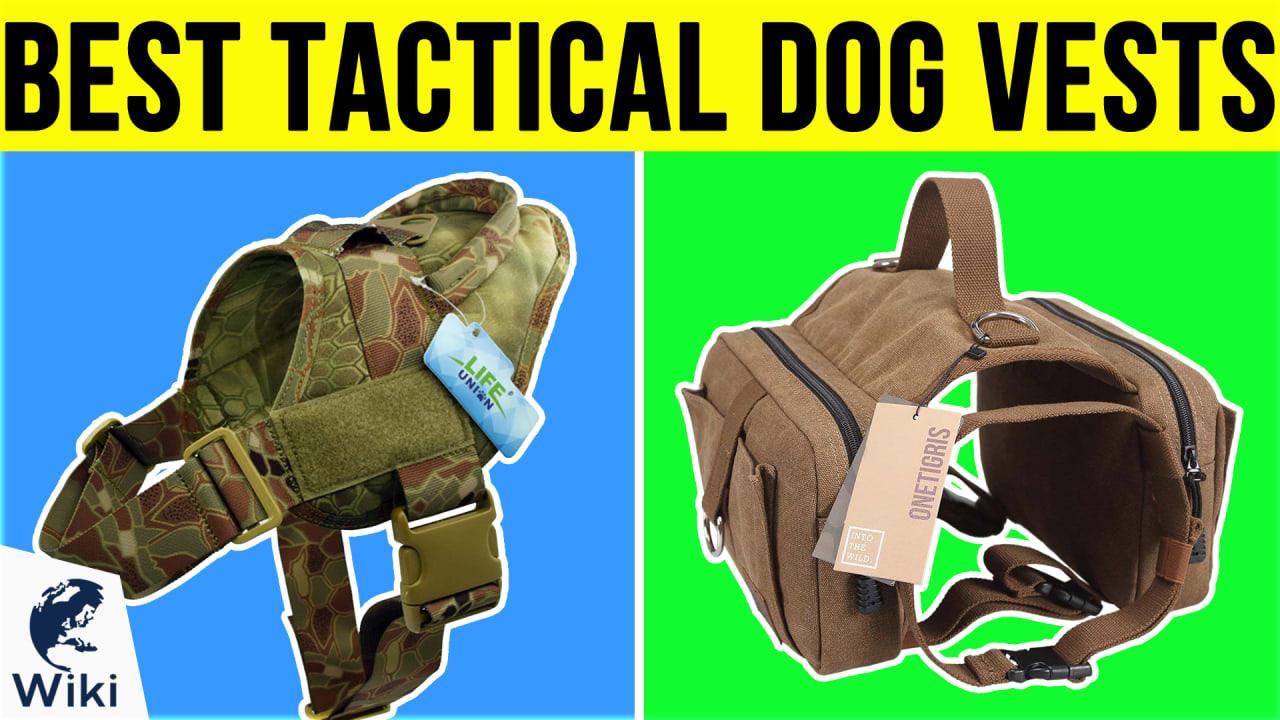 10 Best Tactical Dog Vests