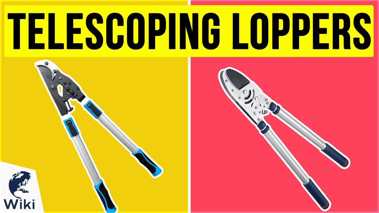10 Best Telescoping Loppers