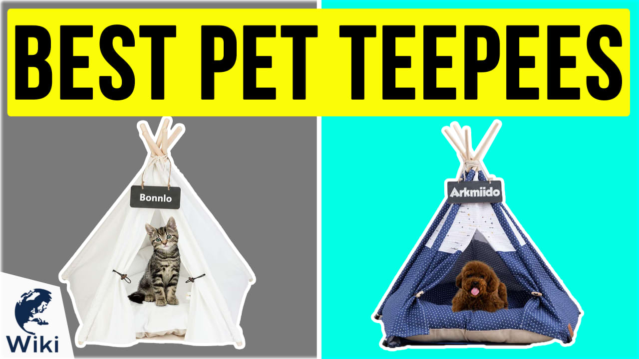 10 Best Pet Teepees