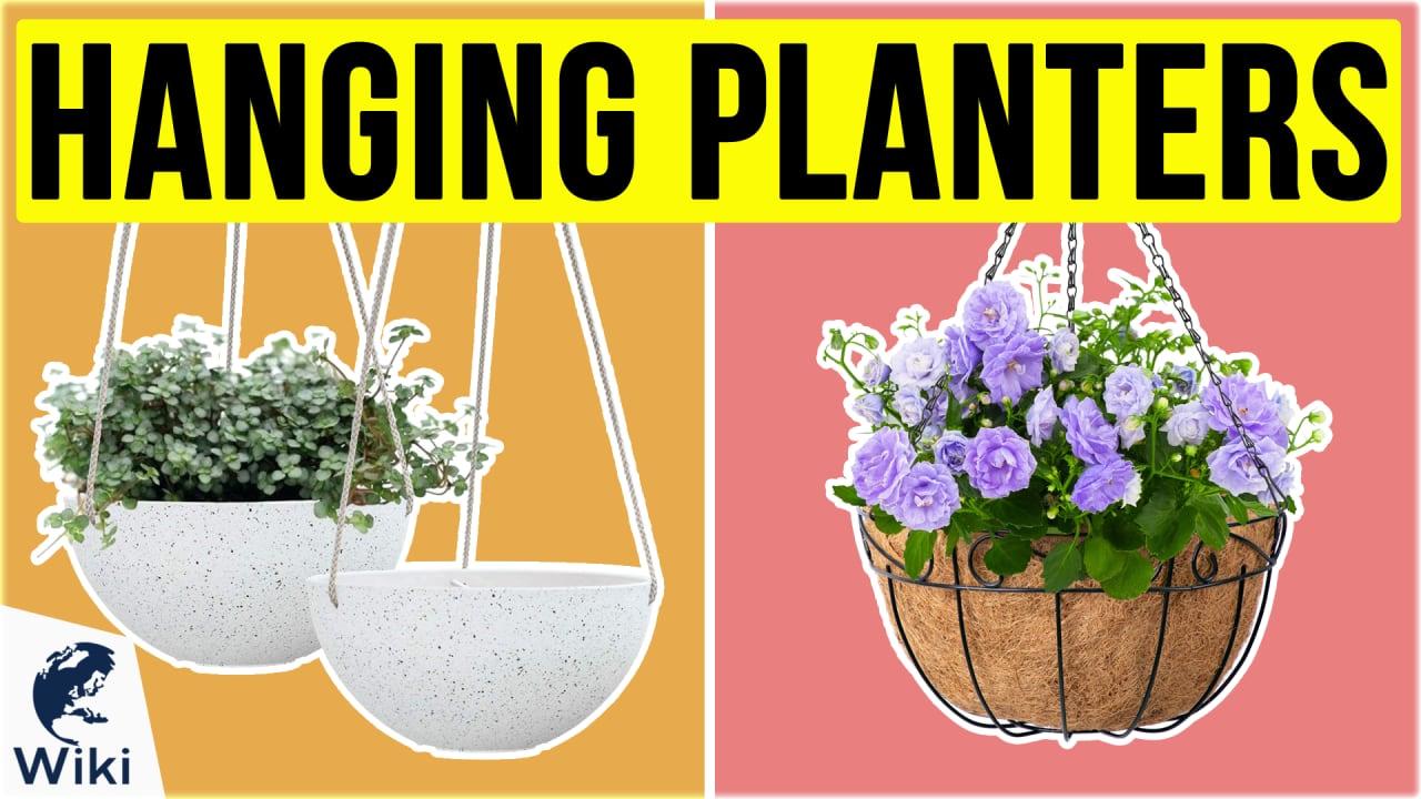 10 Best Hanging Planters