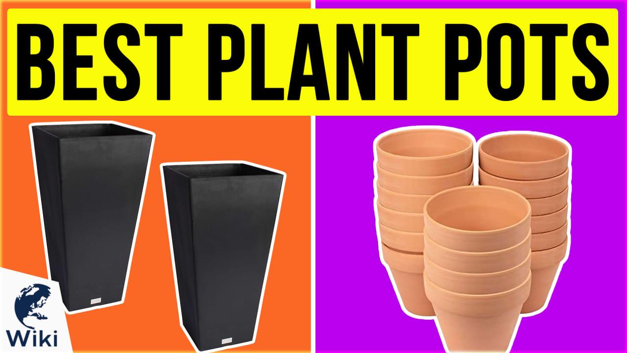 10 Best Plant Pots