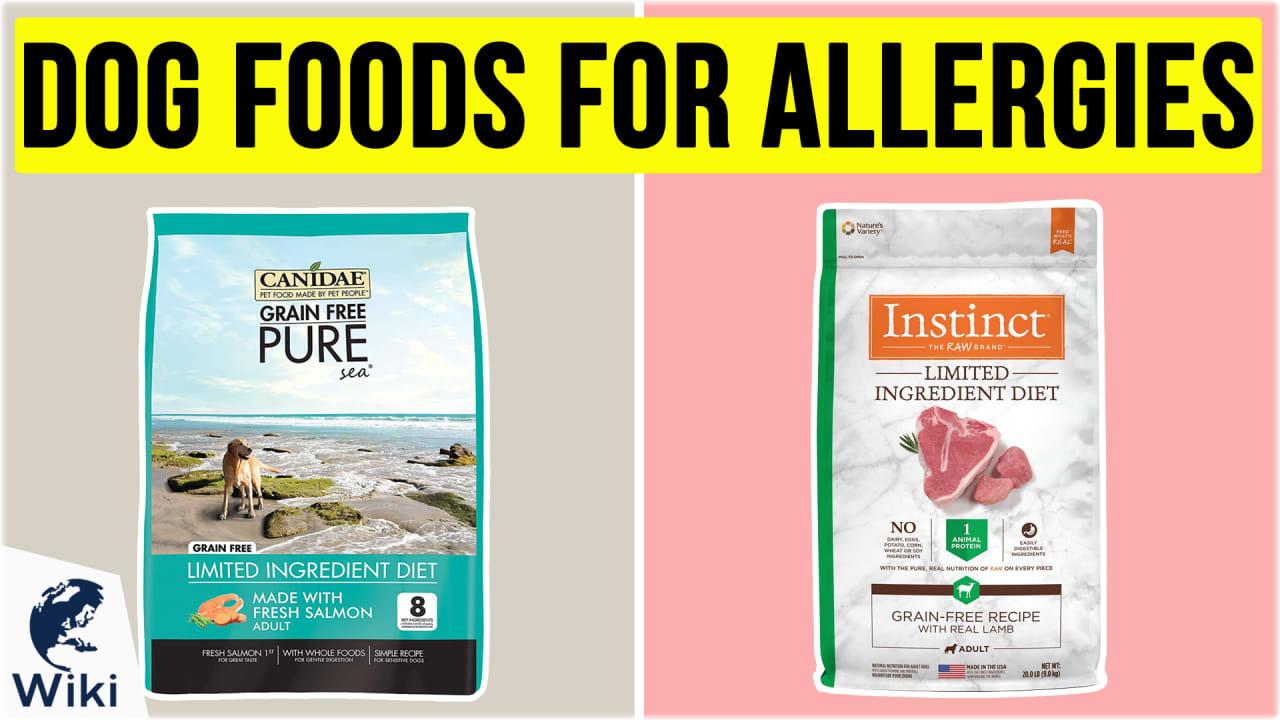 10 Best Dog Foods For Allergies