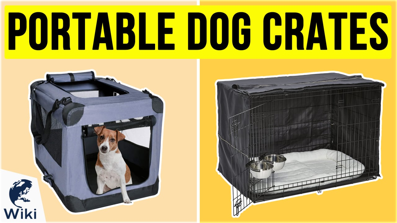 10 Best Portable Dog Crates