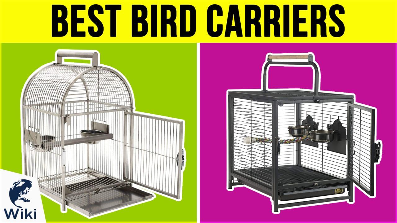 7 Best Bird Carriers