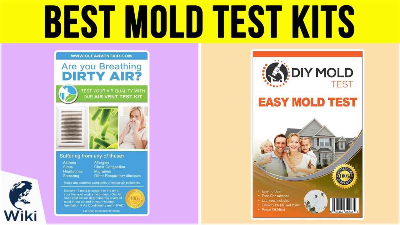 7 Best Mold Test Kits