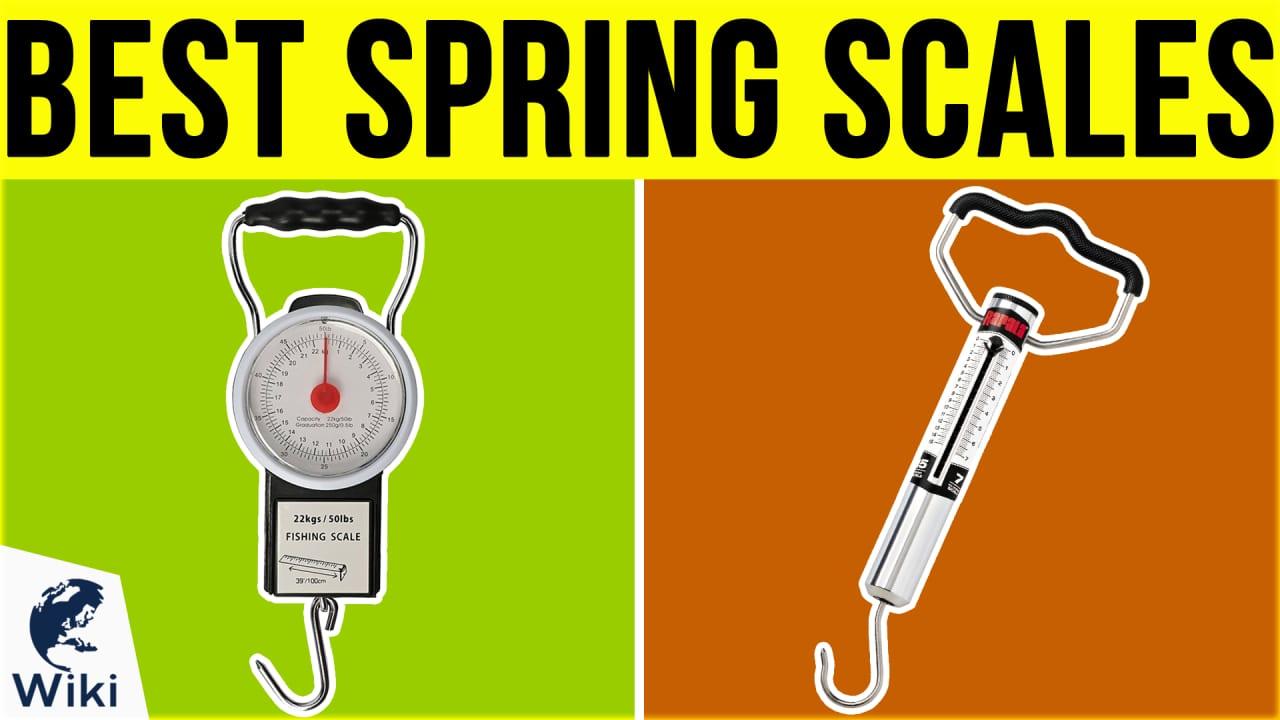 10 Best Spring Scales