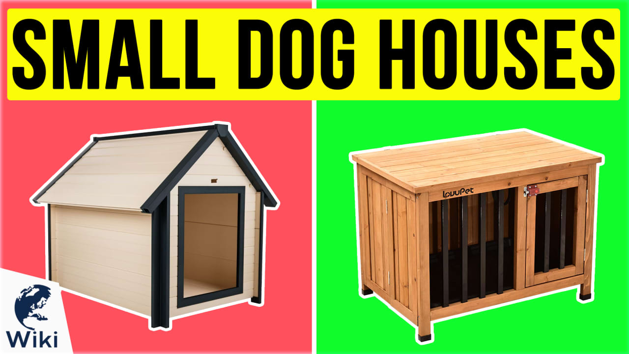 10 Best Small Dog Houses