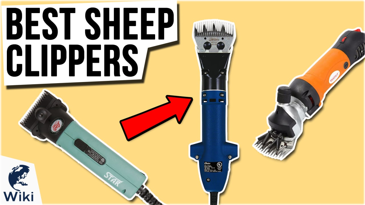 8 Best Sheep Clippers