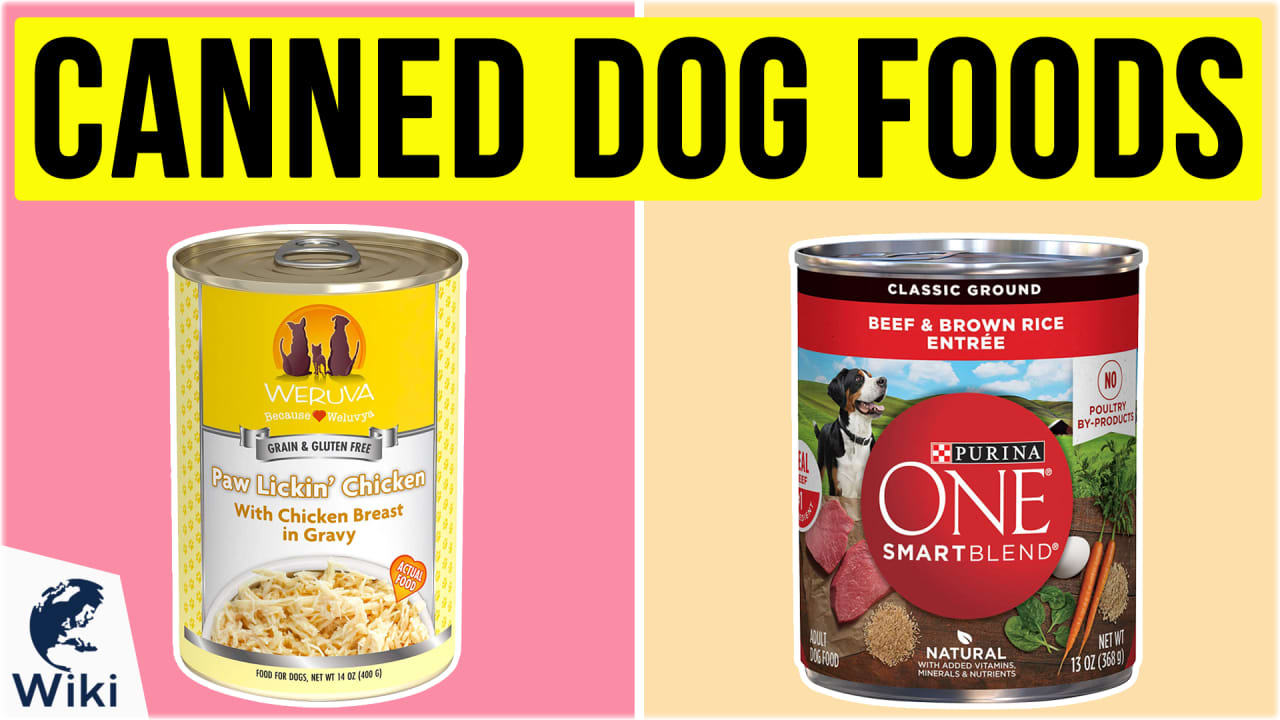 10 Best Canned Dog Foods