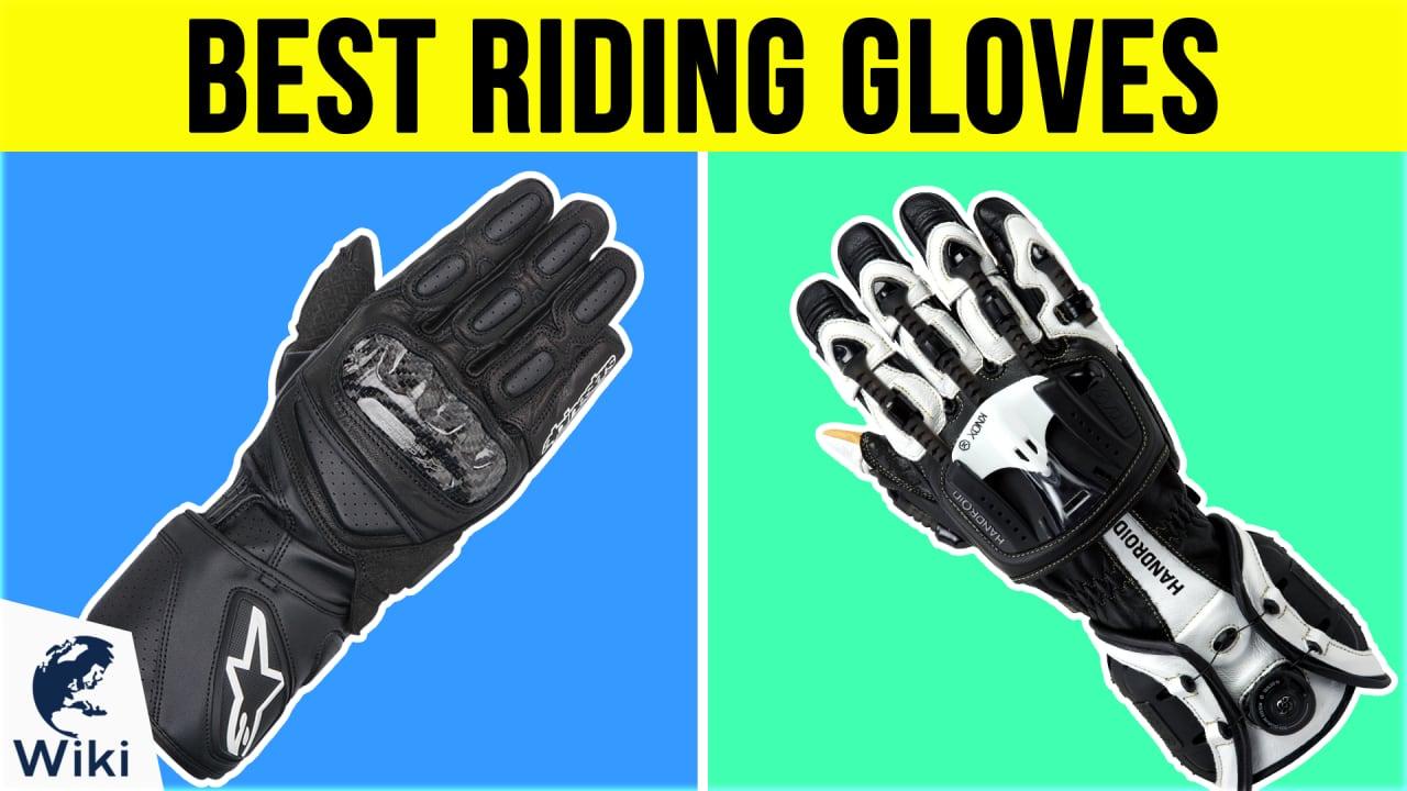 10 Best Riding Gloves