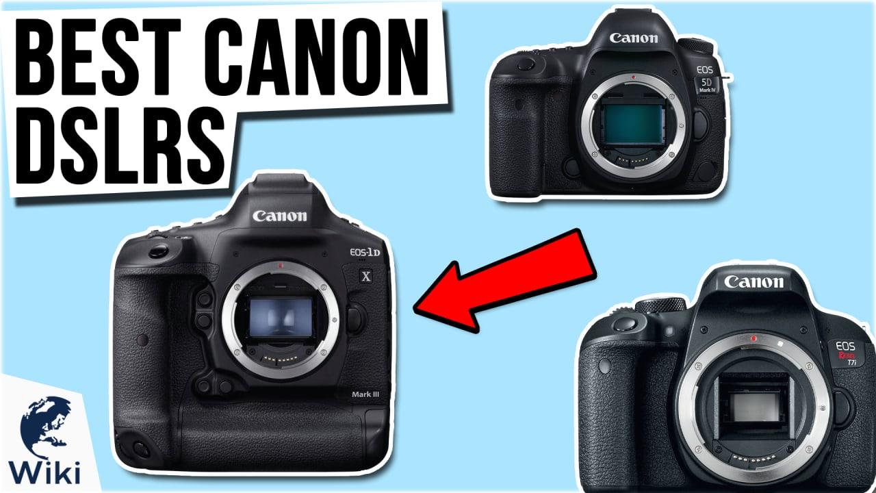 7 Best Canon DSLRs