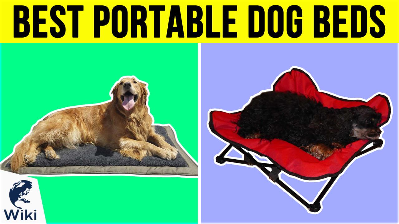 10 Best Portable Dog Beds