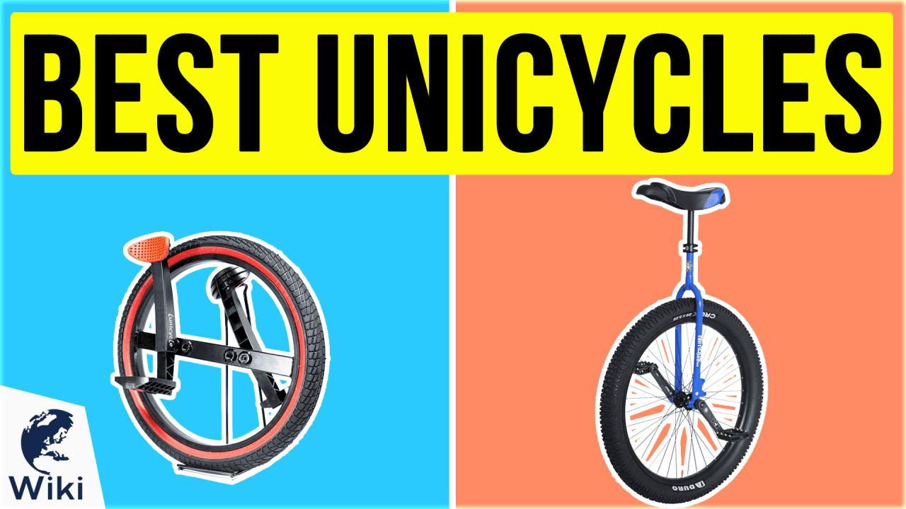 9 Best Unicycles