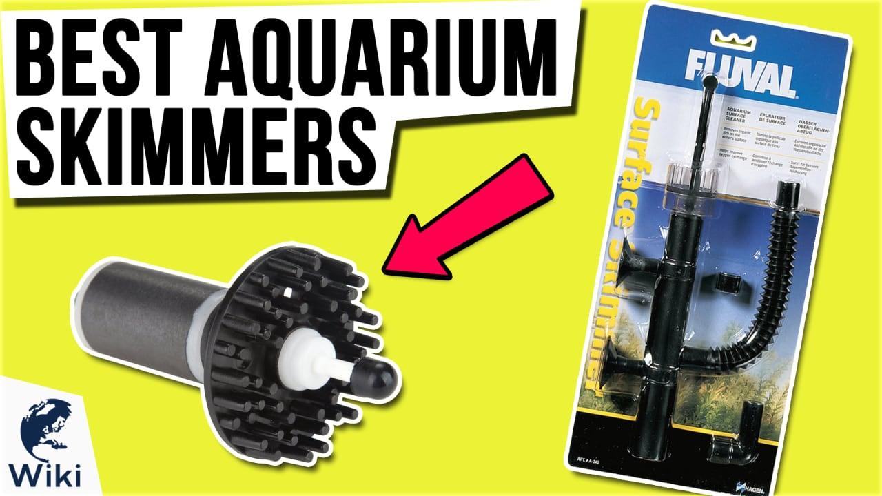 10 Best Aquarium Skimmers