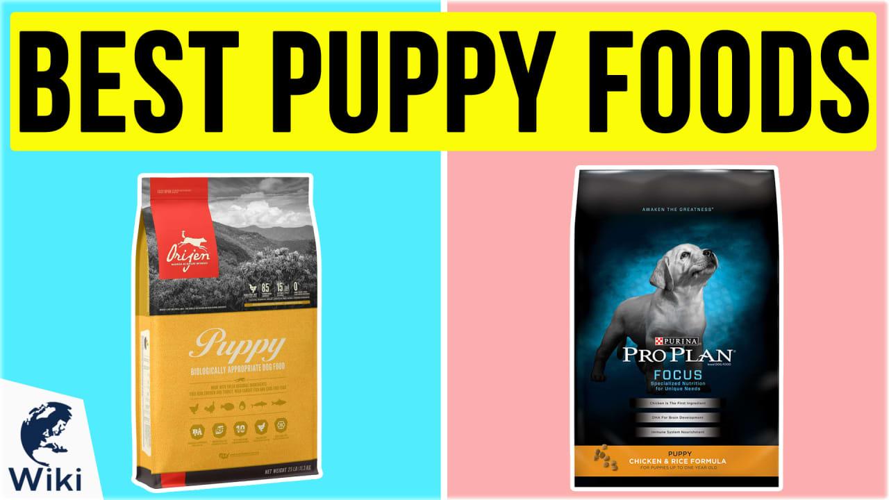 10 Best Puppy Foods