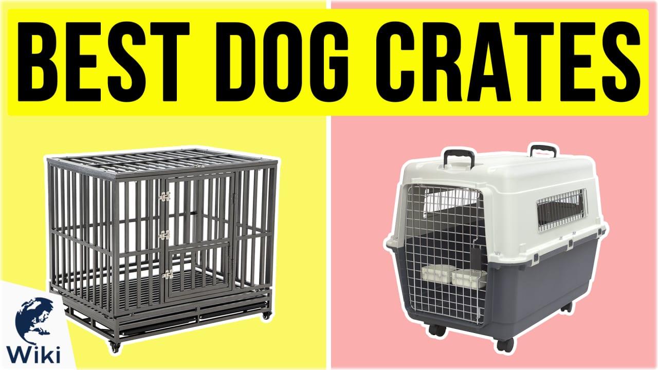 10 Best Dog Crates