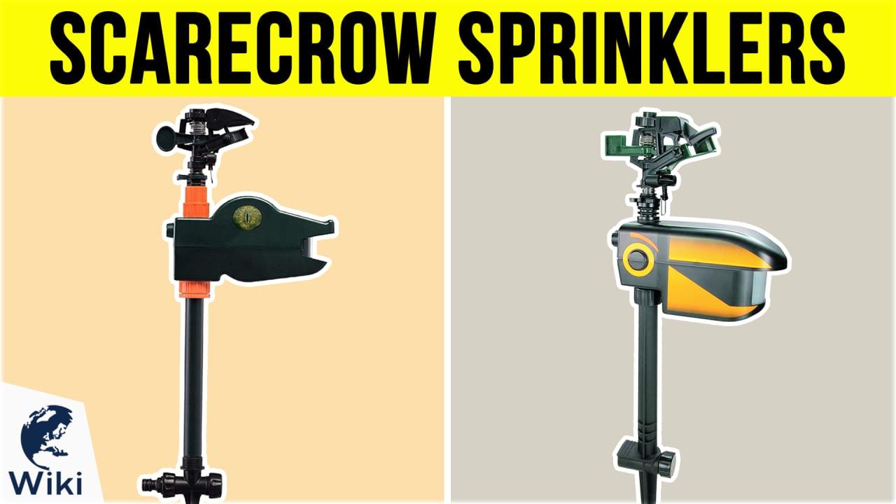 6 Best Scarecrow Sprinklers