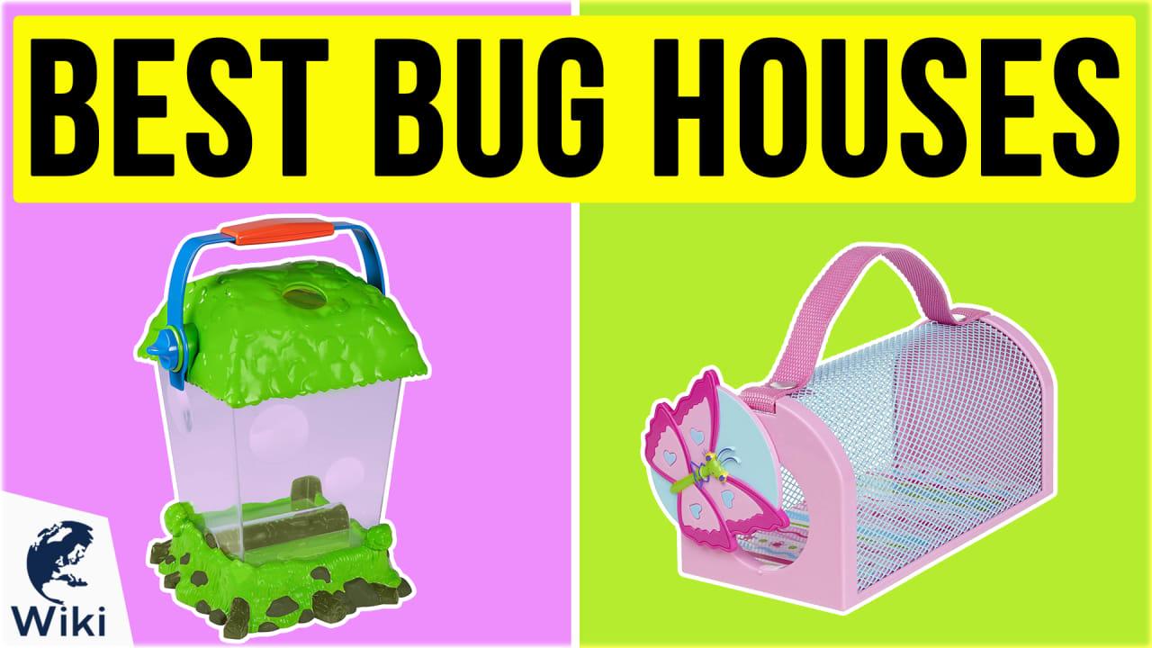 10 Best Bug Houses
