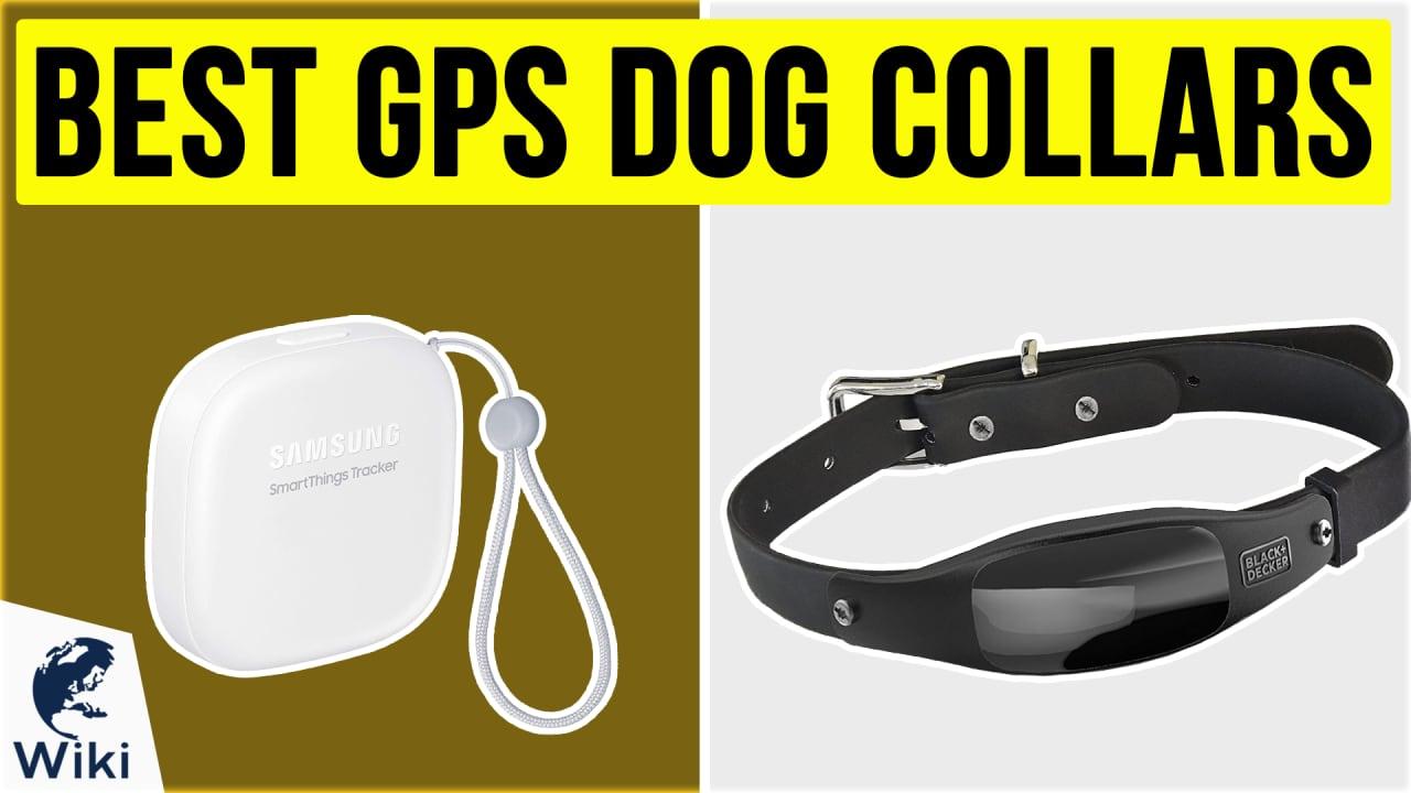 10 Best GPS Dog Collars