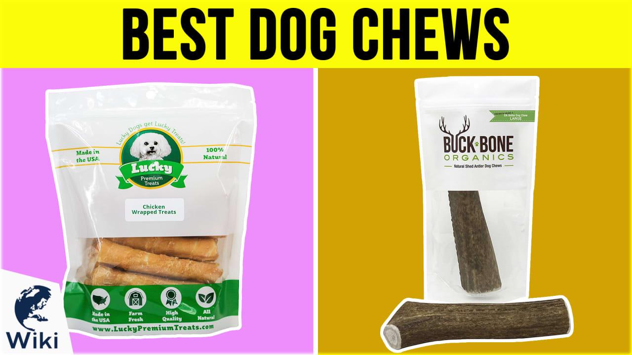10 Best Dog Chews