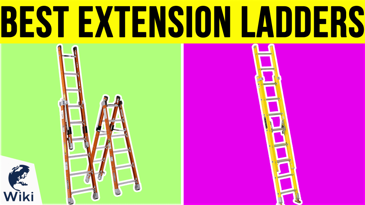 10 Best Extension Ladders