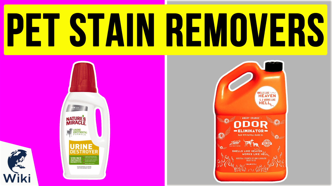 10 Best Pet Stain Removers