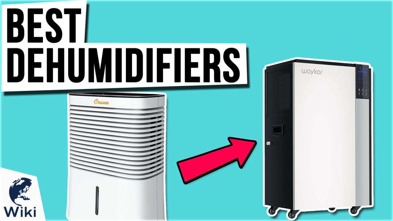 9 Best Dehumidifiers