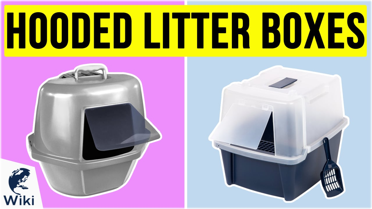 8 Best Hooded Litter Boxes