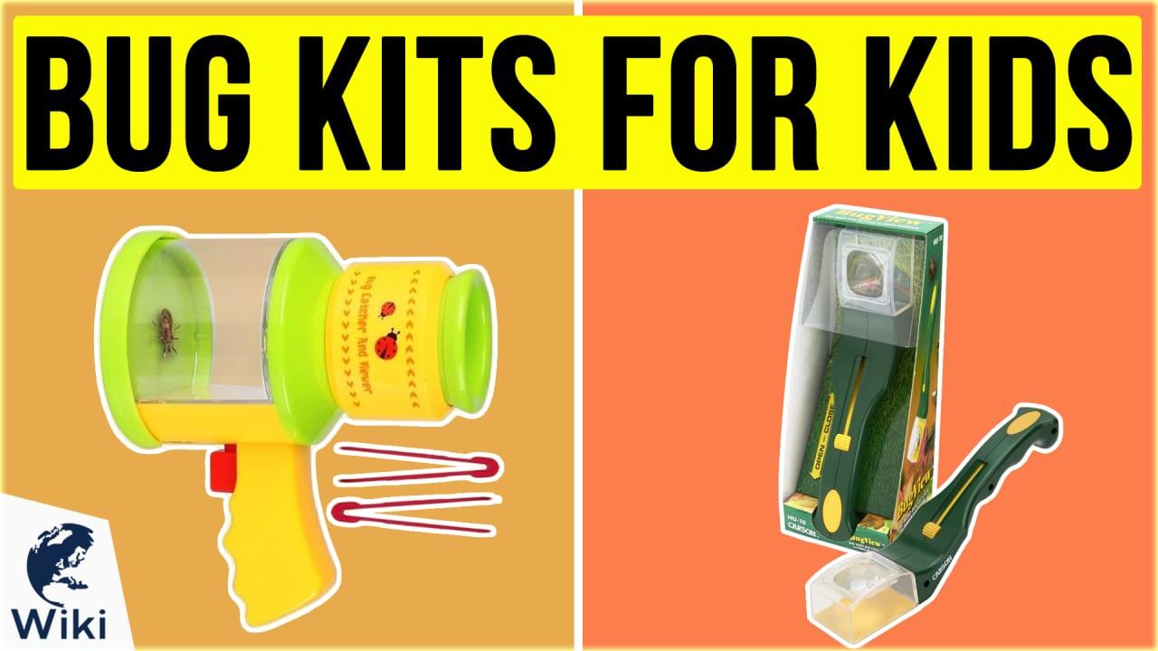 10 Best Bug Kits For Kids