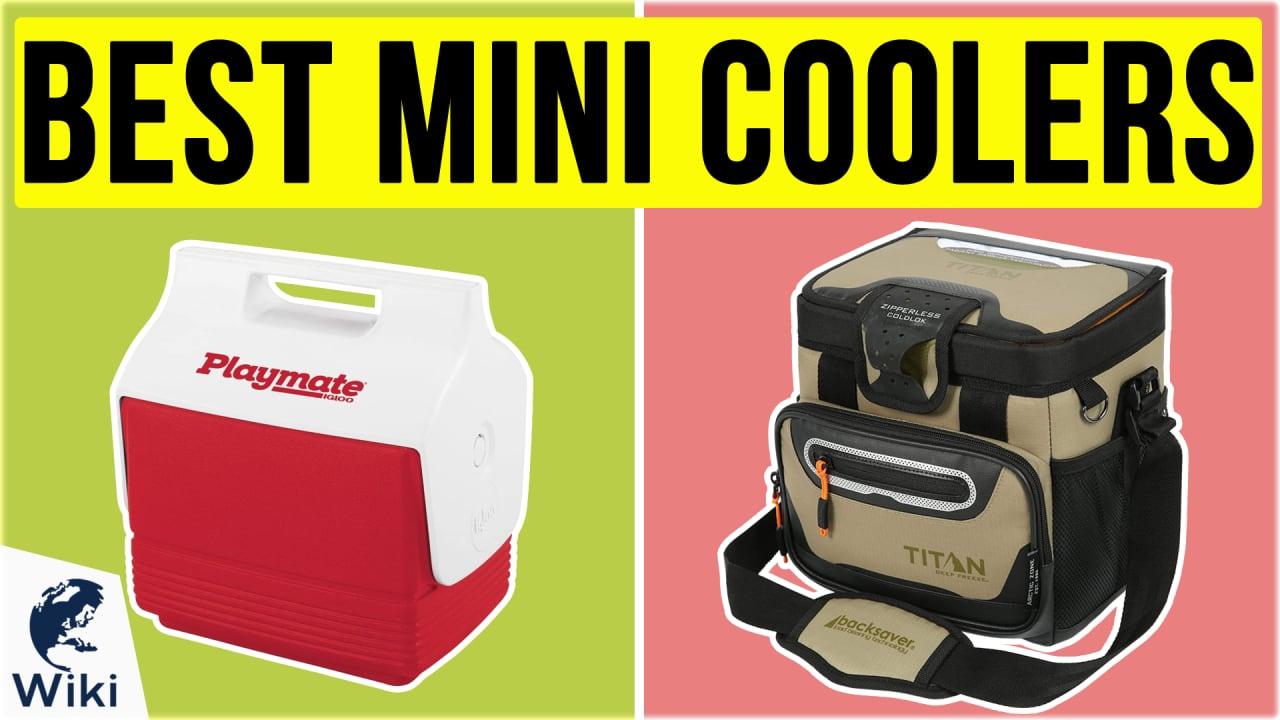 10 Best Mini Coolers