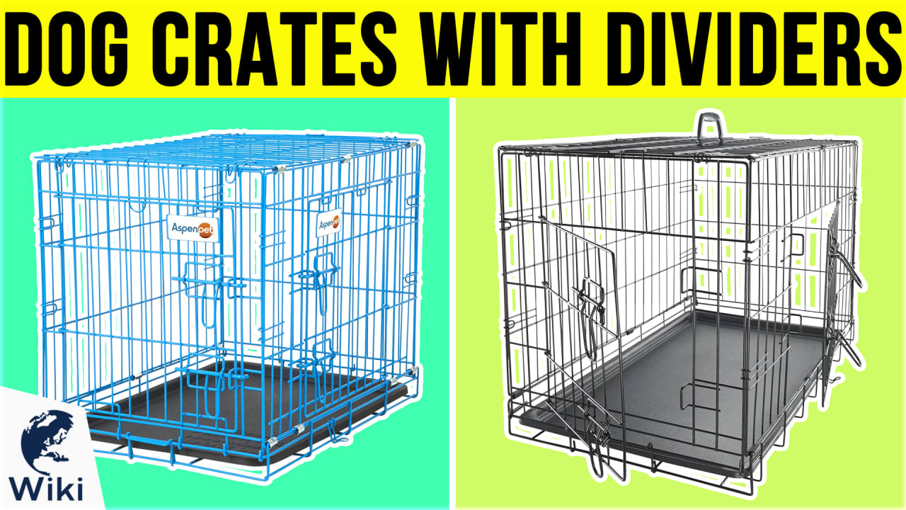 9 Best Dog Crates With Dividers