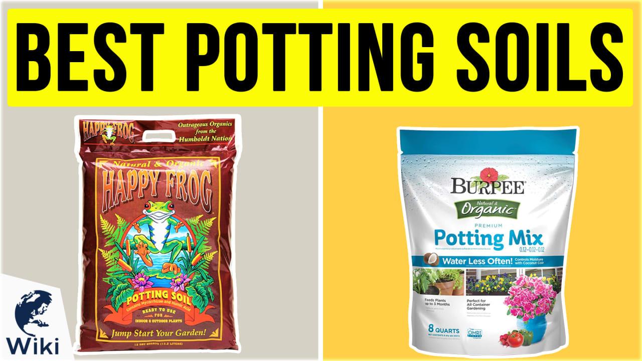 10 Best Potting Soils