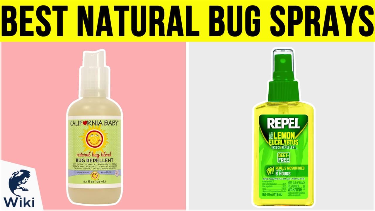 10 Best Natural Bug Sprays