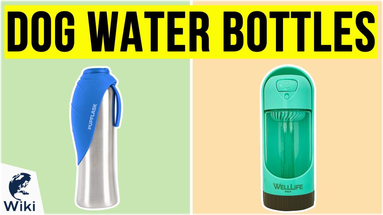 10 Best Dog Water Bottles